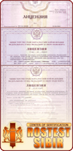 Transport license in Russia
